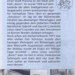 Leseprobe Der Löwe von Bonn